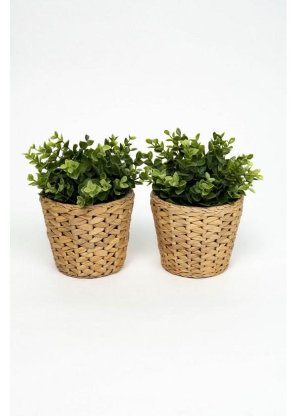 [RENTAL] Set of 2 Faux Plant in Rattan Pot Holder $4.00