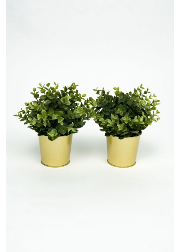 [RENTAL] Set of 2 Faux Plant in Gold Pot $4.00